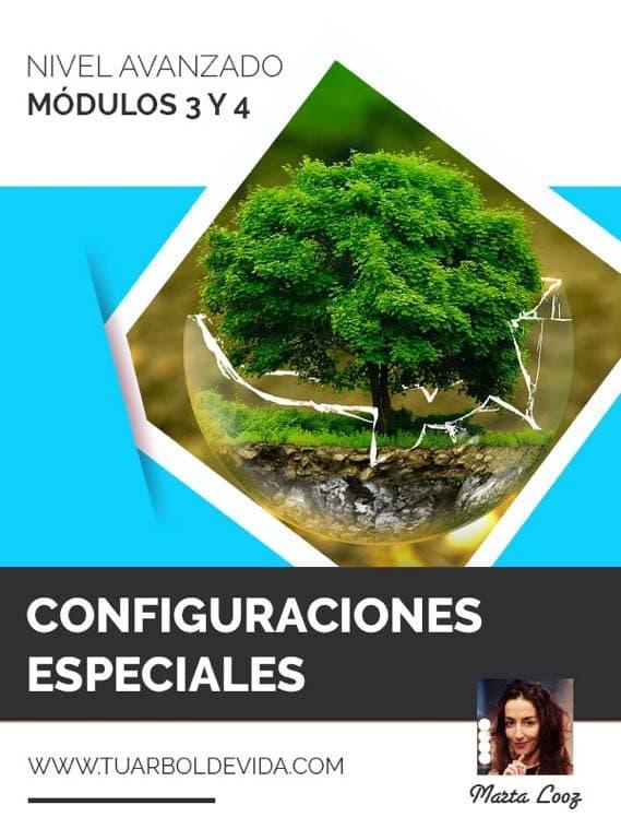 Módulo 3 y 4: Configuraciones especiales, Flores de Bach y piedras en la naturaleza