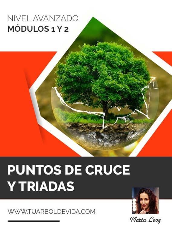Módulo 1 y 2: Puntos de cruce y triadas en el árbol de la vida